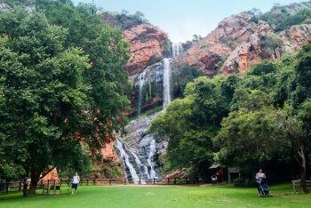 Walter Sisulu National Botanical Garden, Roodepoort, Johannesburg, Gauteng